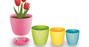 قیمت خرید گلدان