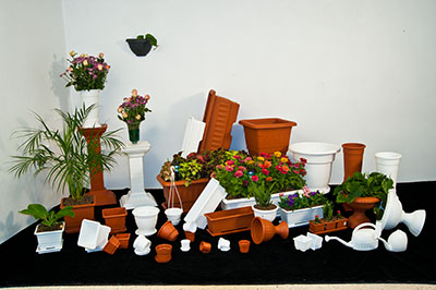 پخش عمده گلدان